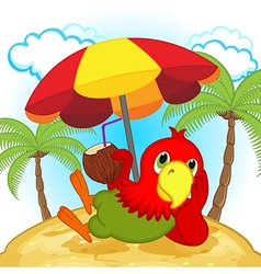 Parrot resting on beach vector