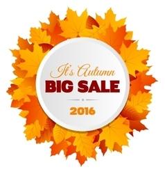 Big autumn sale flyer design vector