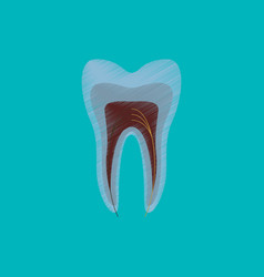 Flat shading style icon tooth vector