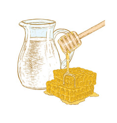 Hand drawn set of milk and honey sketch vector