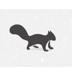Gray squirrel logo or icon vector
