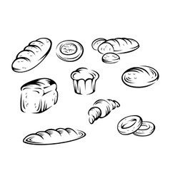 Bakery elements vector image vector image