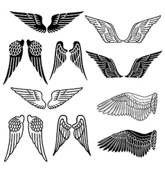 Wings set linear silhouette vector image vector image