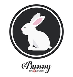 Bunny design vector
