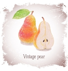 Vintage card with pear vector