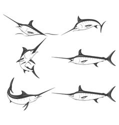 Set of monochrome marlins vector