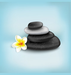 Spa stones with exotic tropical flower vector
