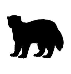 Wolverine silhouette black white icon vector