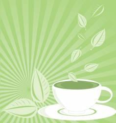 green tea vector image
