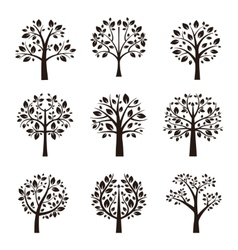 Tree silhouette with roots and branches vector image