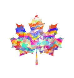 Abstract maple leaf silhouette with pattern vector