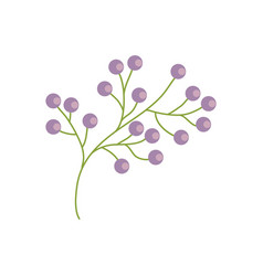 Branch flower wild image vector