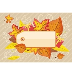 Tag label template for autumn sale vector