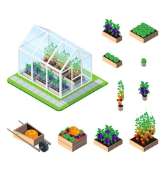 Greenhouse isometric set vector image