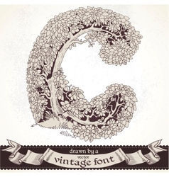 Fable forest hand drawn by a vintage font - C vector image