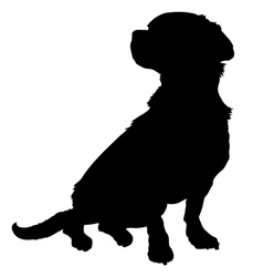 Mixed breed silhouette vector