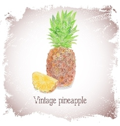Vintage card with pineapple vector
