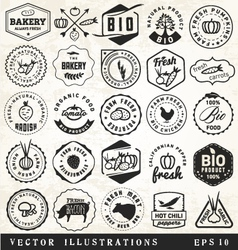 Organic and bio vegetables badges vector