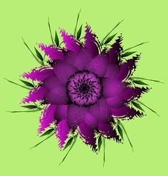 Lilac purple peony flower vector