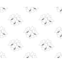 Amaryllis seamless on white background vector