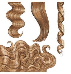 Shiny long blond fair straight and wavy hair vector