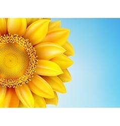 Sunflower sun against EPS 10 vector image