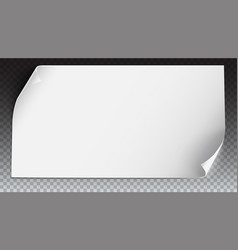 curved paper banner on transparent vector image vector image