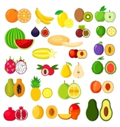 Flat whole and halves of fruits vector image