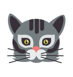 Cat animal carnival mask wild or home feline vector
