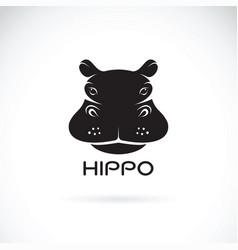 Hippo face design on white background wild vector