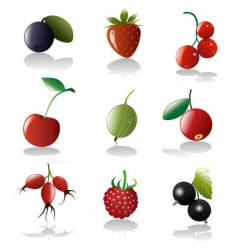 Berries icon set vector