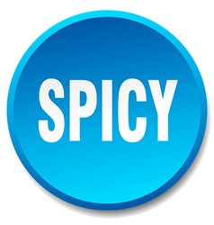 Spicy blue round flat isolated push button vector