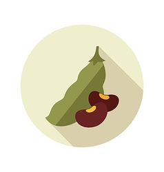 Beans flat icon Vegetable vector image vector image