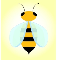 Bee with transparent wings vector
