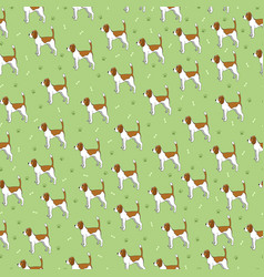 Seamless pattern with cute dog breed beagle vector