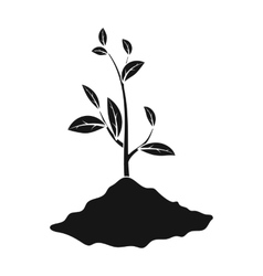 Sprout icon in black style isolated on white vector image