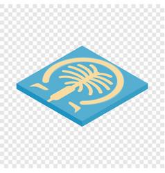 Artificial islands in dubai isometric icon vector