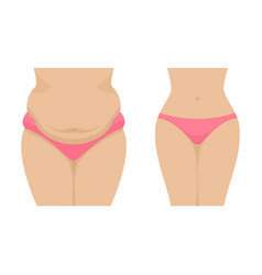 A fat and thin female belly vector