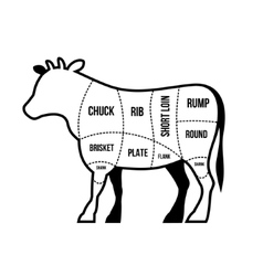 Beef cuts chart cow isolated on white background vector
