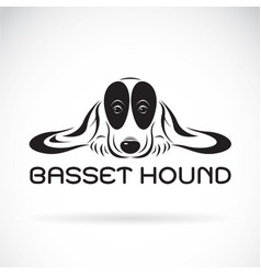 basset hound dog on a white background pet animals vector image