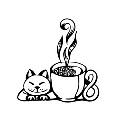 coffee cat vector image