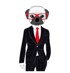 Brutal french bulldog in elegant classic suit hand vector