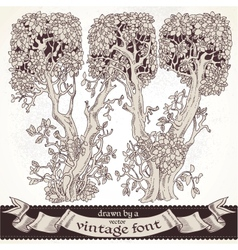 Fable forest hand drawn by a vintage font - W vector image vector image