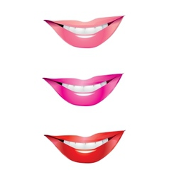 lips smile vector image
