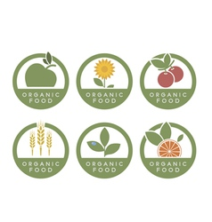 Organic food icons vector image