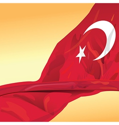 Rupublic of Turkey flag wave in the wind of win vector image vector image
