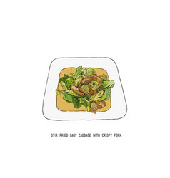 stir fried baby cabbage with crispy pork thai vector image