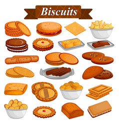 Set of yummy assorted cookies and biscuit food vector