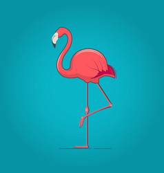 pink flamingo on blue background vector image