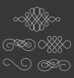 swoosh line and divider calligraphy style vector image